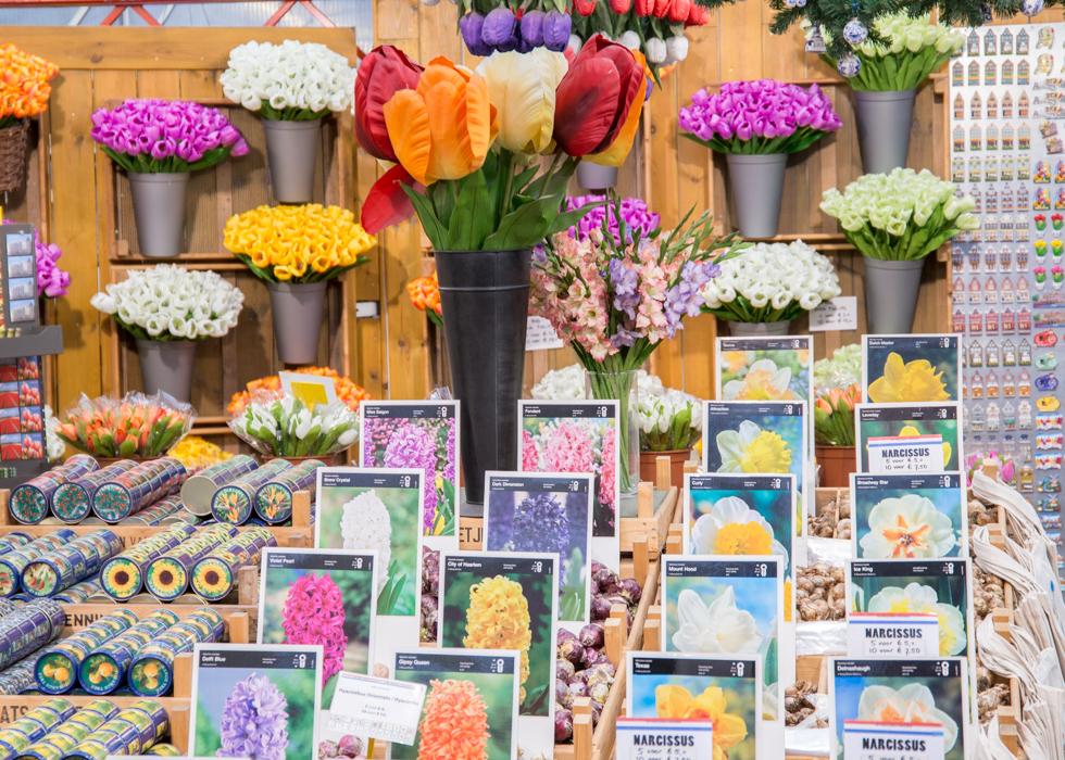AMSTERDAM FLOWER MARKET : BLOEMENMARKT