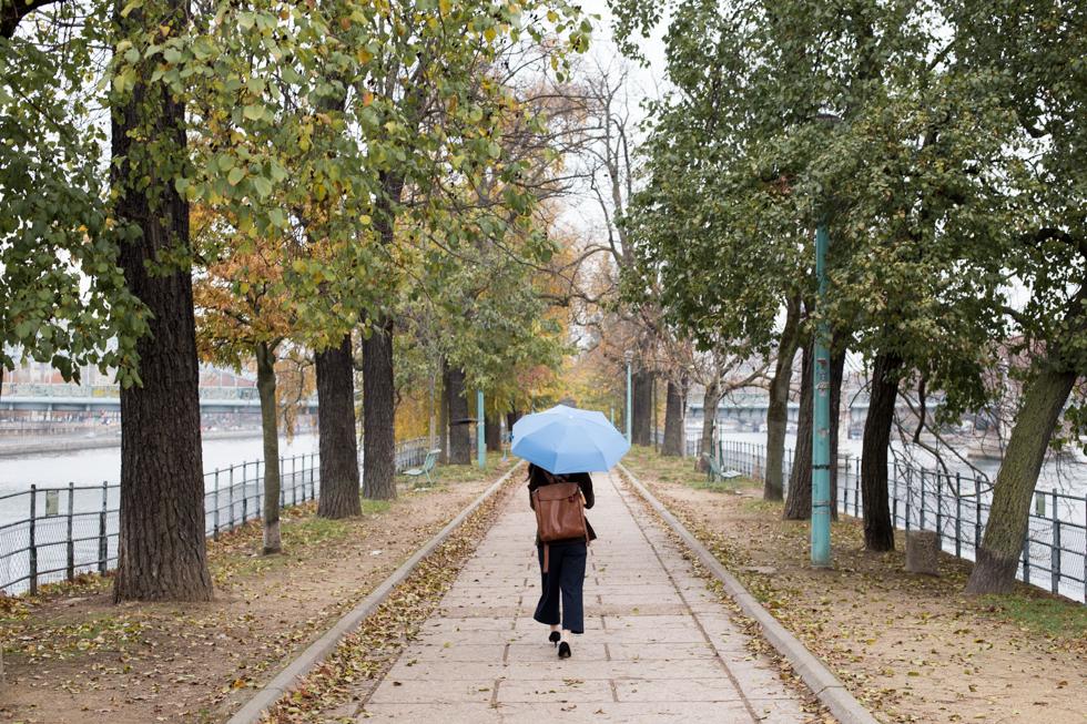 下雨天 折叠伞 散步