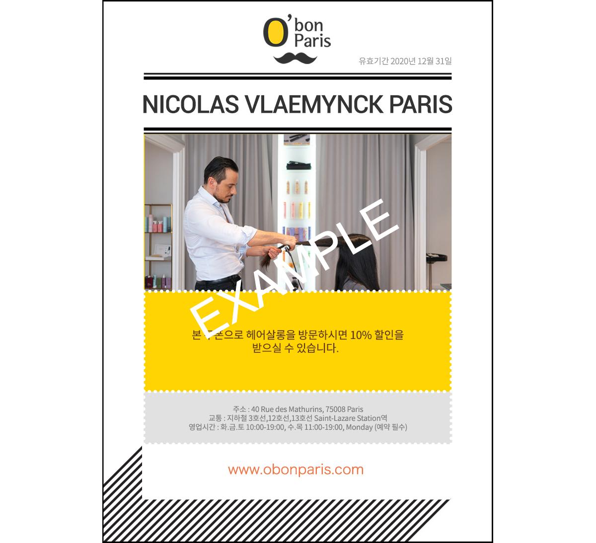 NICOLAS VLAEMYNCK PARIS HAIR SALON DISCOUNT COUPON