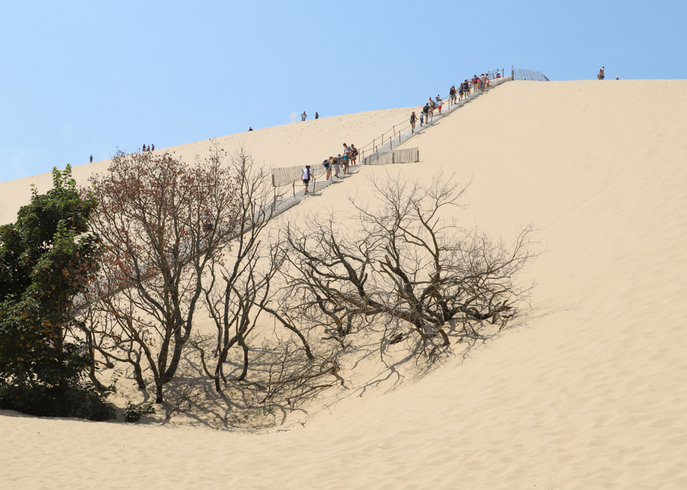 How high is Dune du Pilat