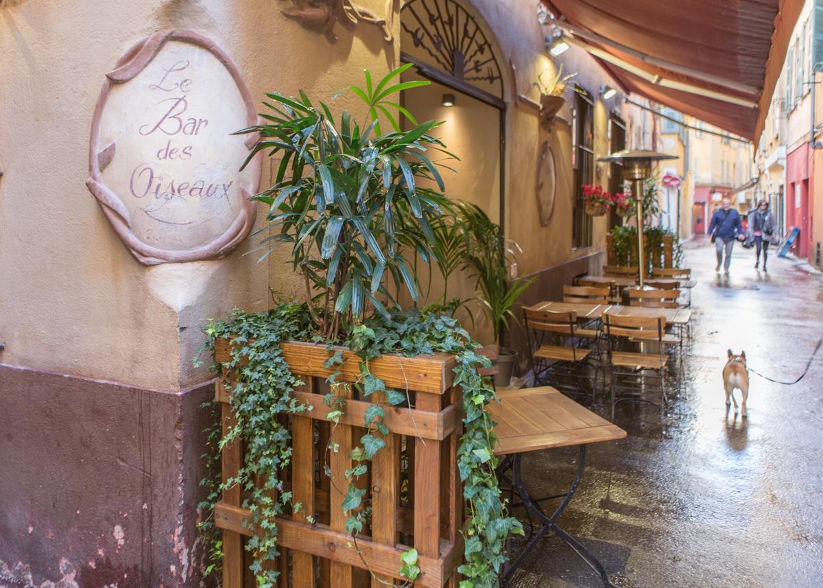 Le bar des oiseaux old town vieux nice restaurant o for Oiseaux de france