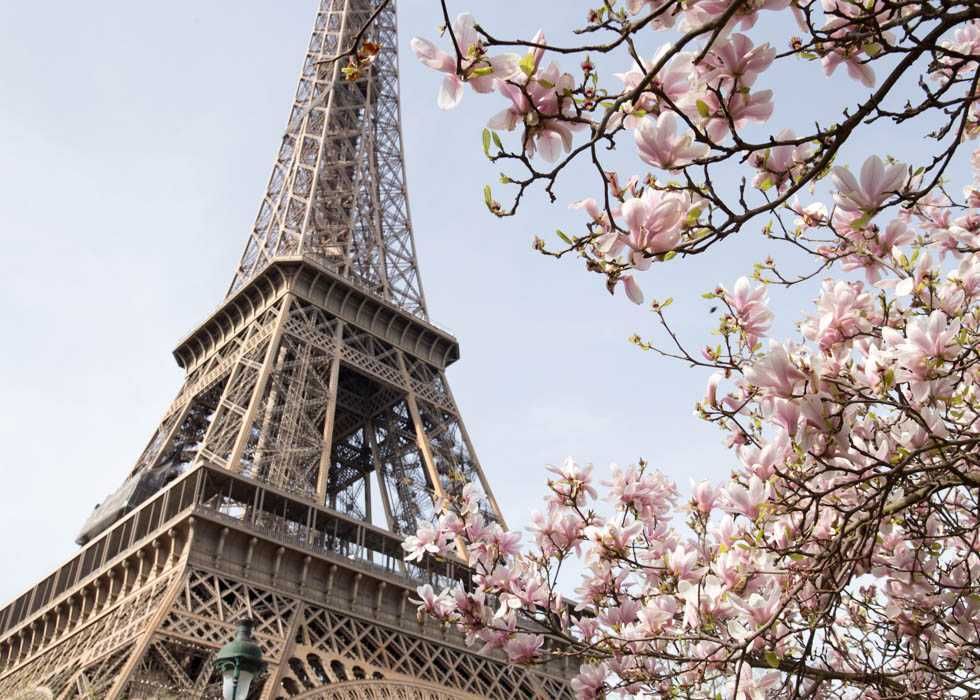 Eiffel Tower- where to see flowers in Paris